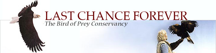 Last Chance Forever: The Bird of Prey Conservancy